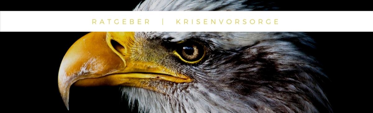 Goodbye Deutschland – Ein Ratgeber zurKrisenvorsorge